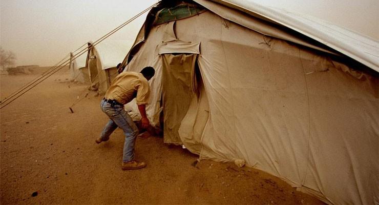 Особенности укрытий в пустыне и их типы
