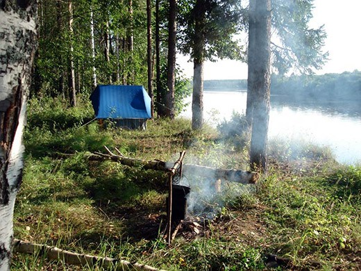 Как организовать стоянку в лесу и добыть пропитание