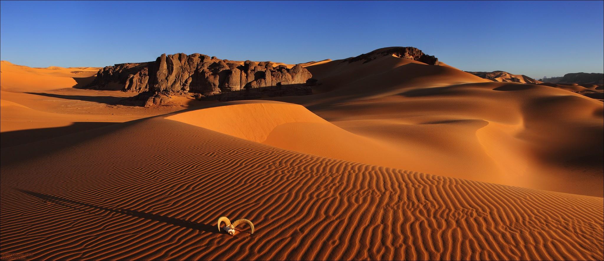 Профилактика и лечение заболеваний в условиях пустыни