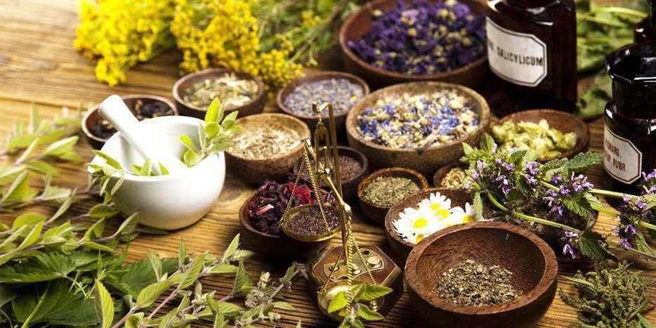 prirodnaja-medicina