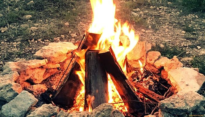 Какие дрова для костра подходят лучше всего, температура горения пламени