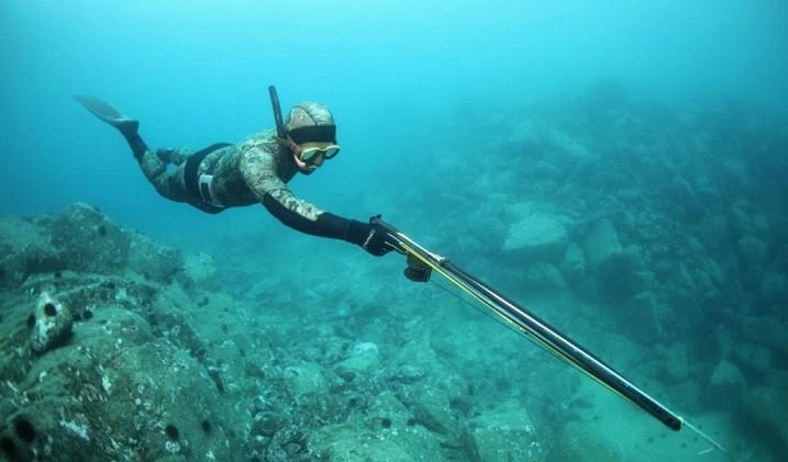 Ласты для подводной охоты - где купить, какие выбрать