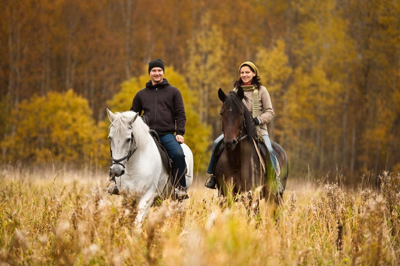Поездки верхом на лошадях - в Москве, в Питере, в Перми