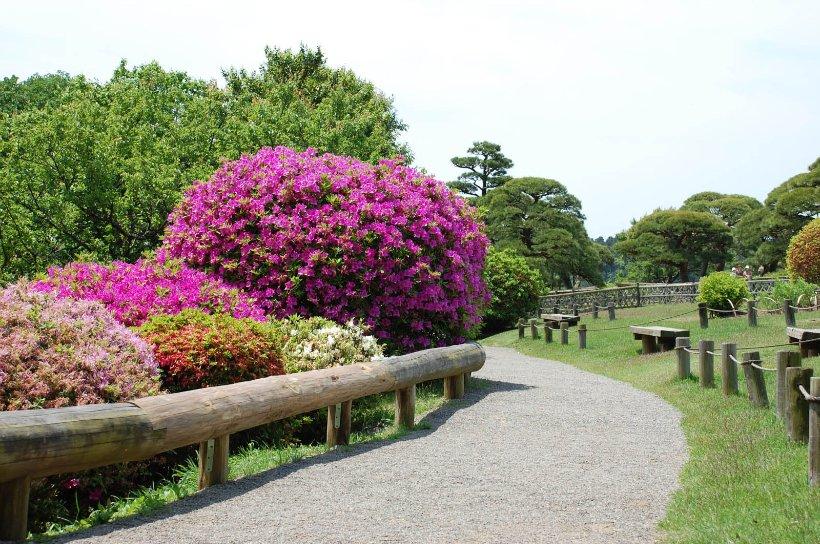 Лучшие национальные парки Японии
