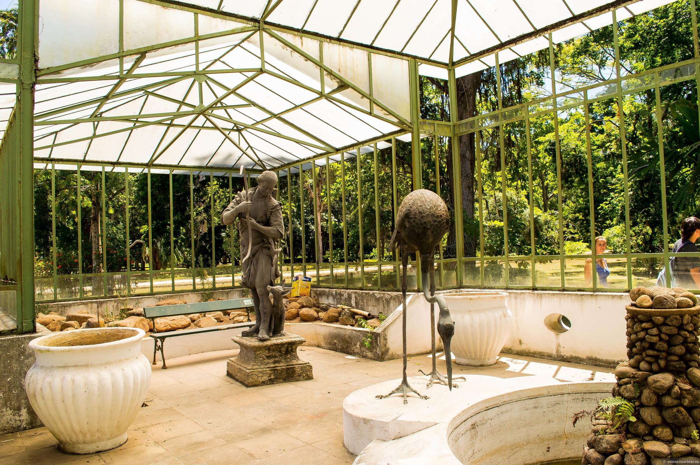 Красивый ботанический сад в Рио Де Жанейро