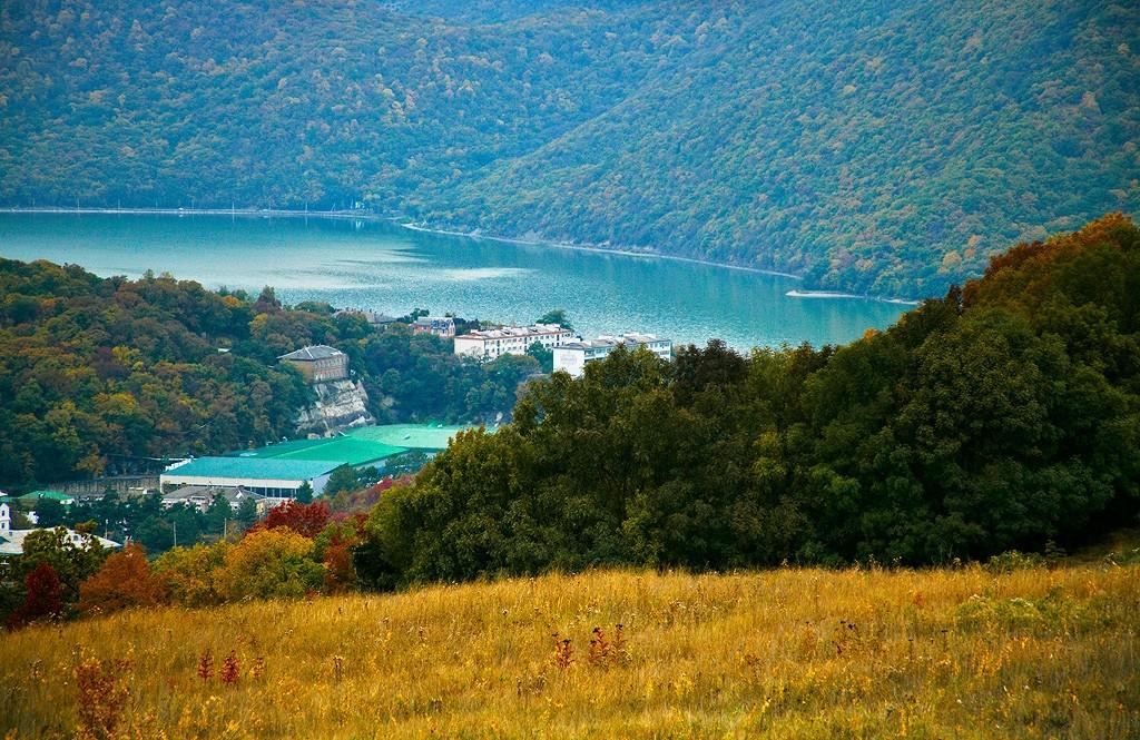 Фото природа в тюменской области пользуются филенчатые
