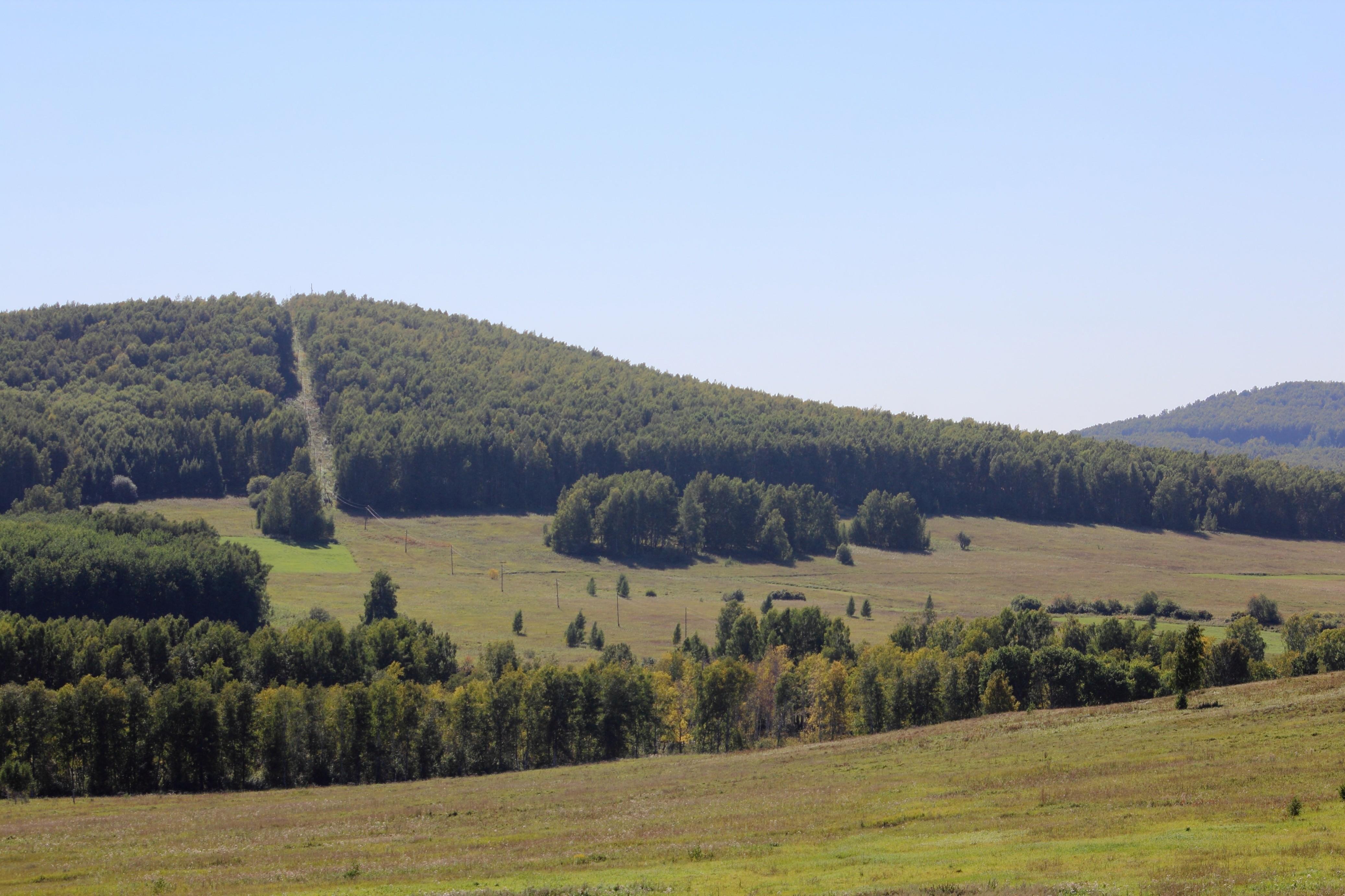 Буготакские сопки Флора и фауна