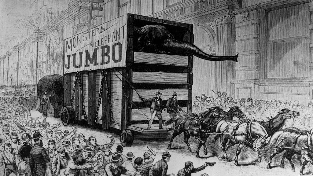 парад из цирковых животных