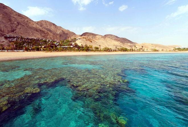 Египет красное море фото