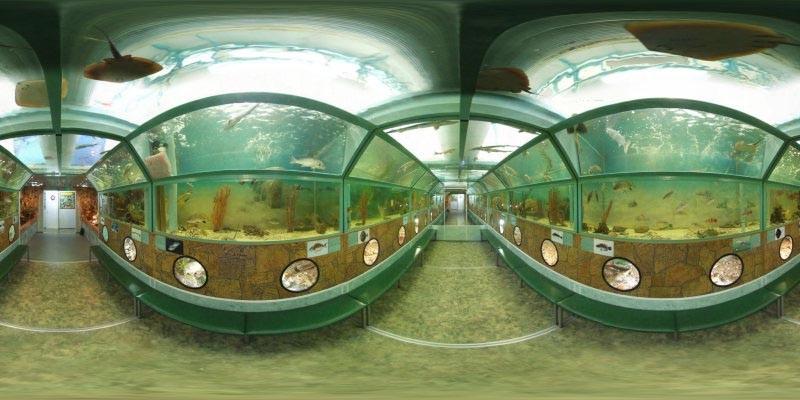 Батискаф – тоннельный аквариум