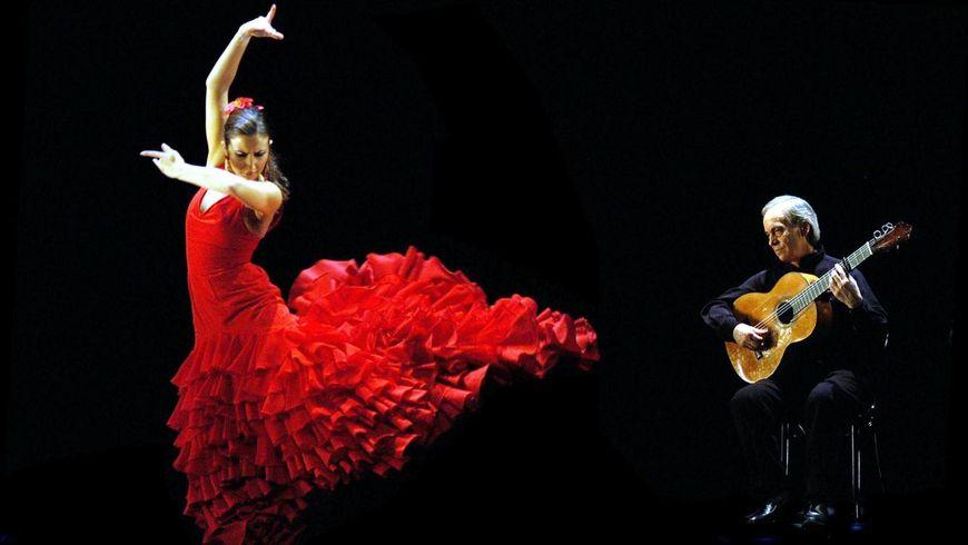 Представление Фламенко - экскурсии