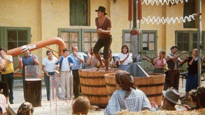 В Тоскану на праздник виноделия - экскурсии