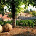 Алазанская долина — старинный край виноградарства - экскурсии