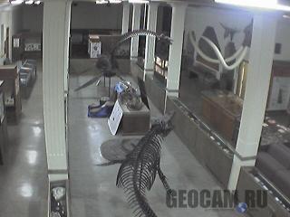 Веб-камера в музее геологии