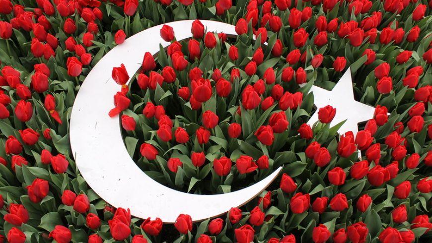 Османские султаны и их тюльпаны - экскурсии