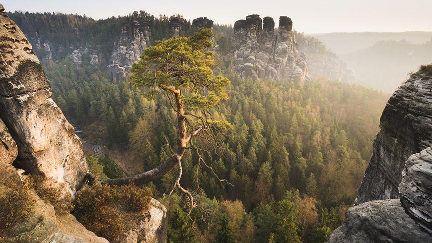 Магия Саксонской Швейцарии - экскурсии