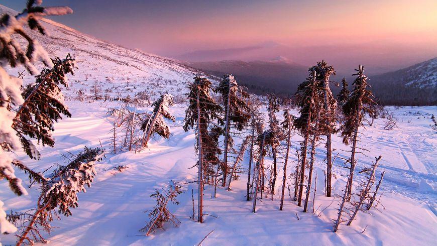 На снегоходе к Перевалу Дятлова - экскурсии