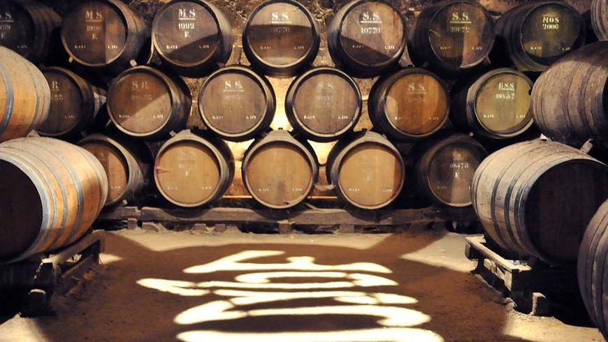 Гастрономические шедевры и секреты вин Сетубала - экскурсии