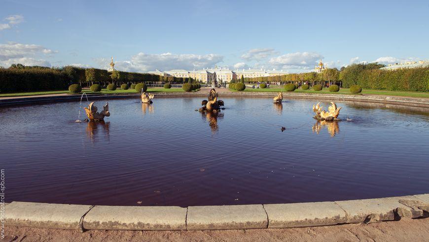 Фото-экскурсия «Петергоф — столица фонтанов» - экскурсии