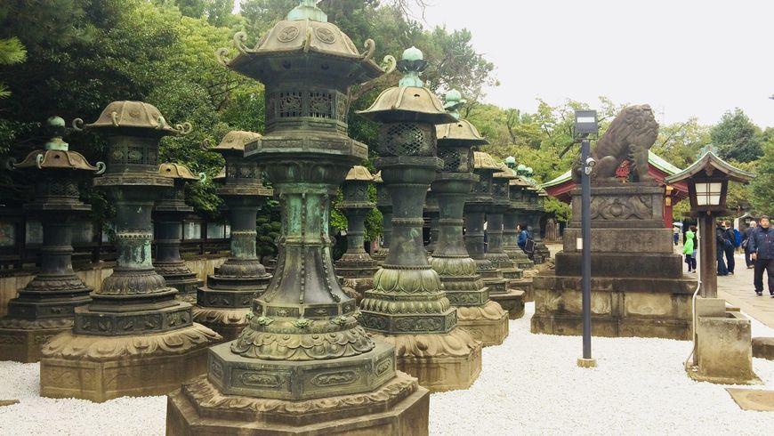 Позеленому кольцу Яманоте-сен - экскурсии