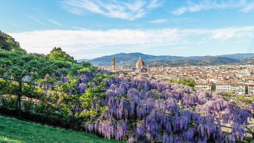 Сады Боболи и музей Бардини - экскурсии
