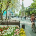 Поцентральной улице Краснодара - экскурсии