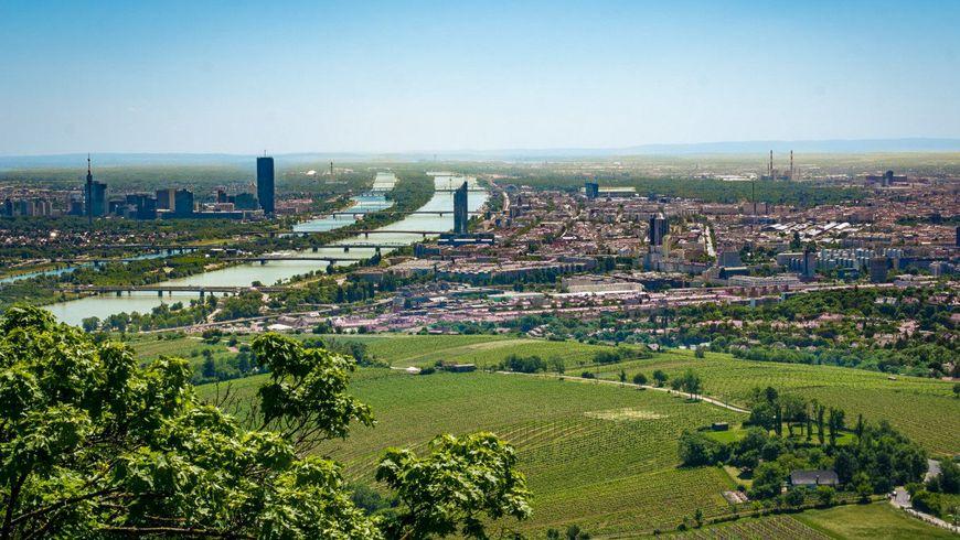 Лучшие места и истории Вены - экскурсии