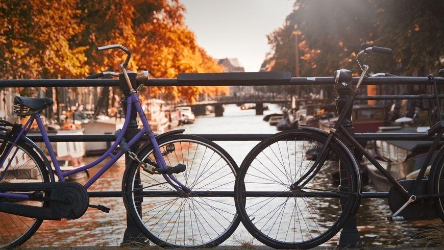 Велопрогулка по Амстердаму: влюбиться в город за три часа - экскурсии