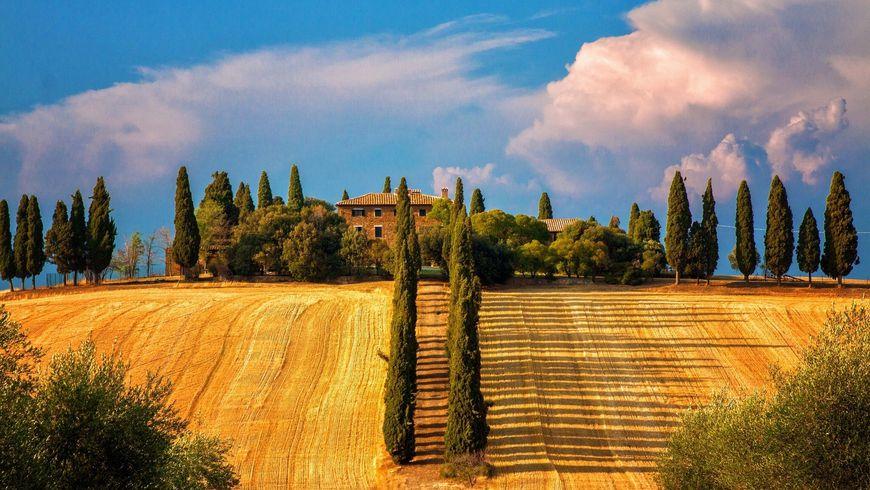 Гастрономический интенсив по холмам Тосканы - экскурсии