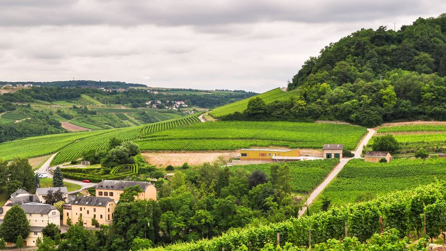 Из Люксембурга в Мозельскую долину - экскурсии