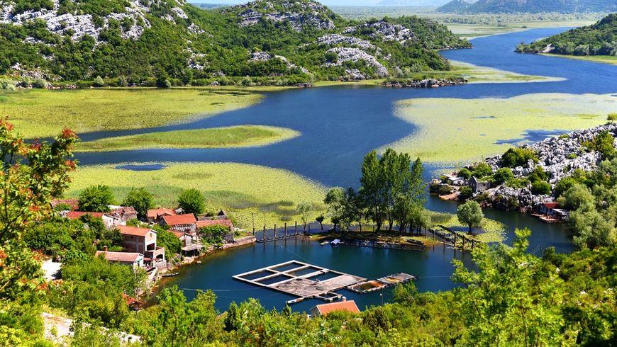 По Скадарскому озеру с черногорцем - экскурсии