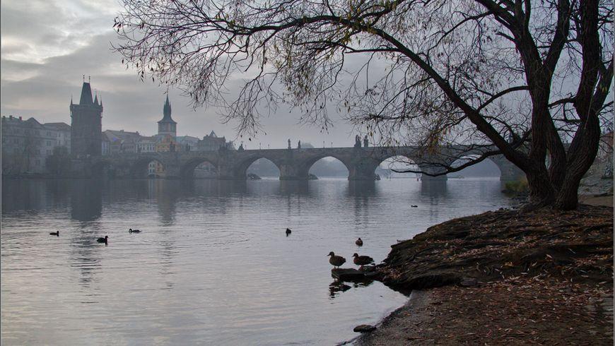 Русская Прага - экскурсии