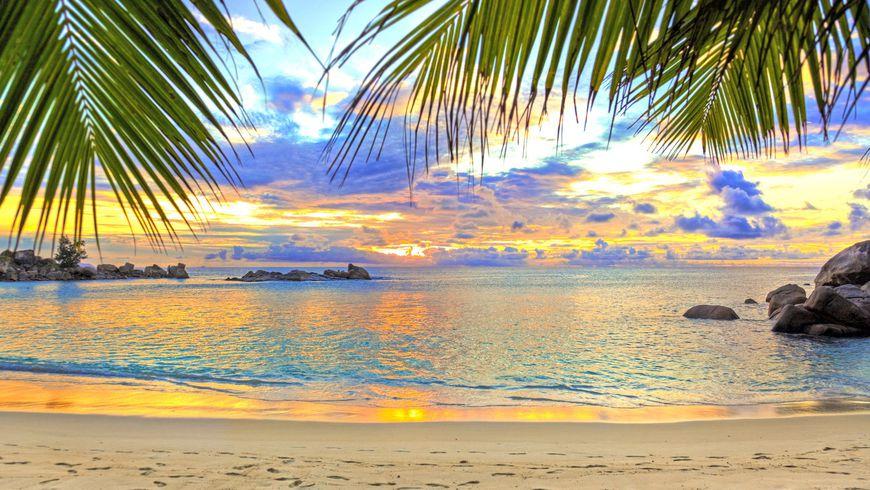 Лучшие пляжи Южного Гоа: отдохнуть встиле «Баунти» - экскурсии