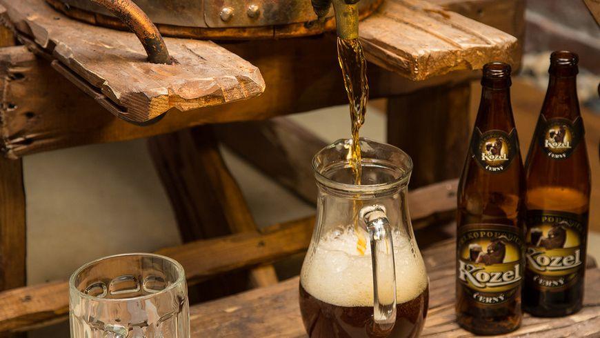 Замок Орлик и пивоварня «Велкопоповицкий Козел» - экскурсии
