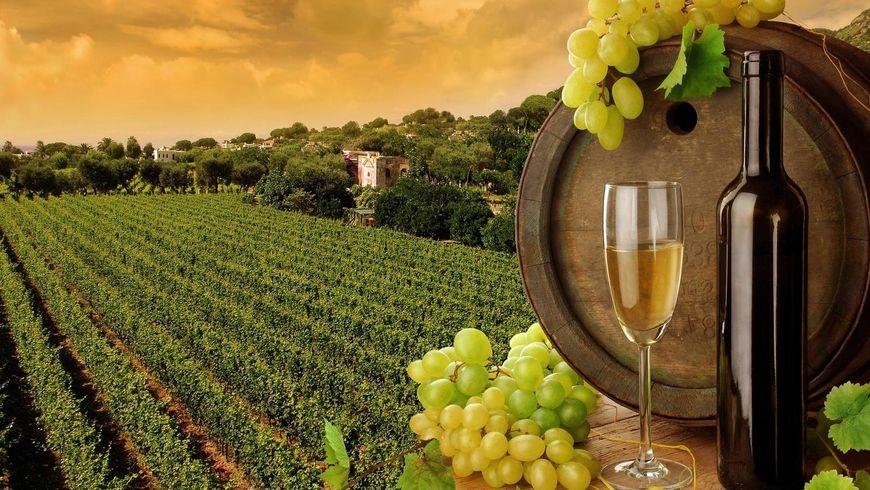 Колыбель вина — Кахетия! - экскурсии