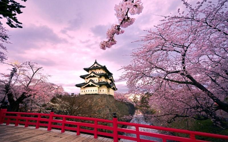 Все про Японию для туристов