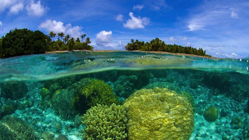 Острова Корал