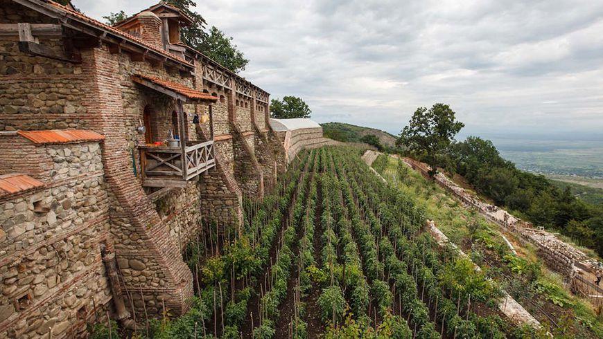 Кахети— колыбель вина