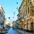 Черновцы приглашают на променад! - экскурсии