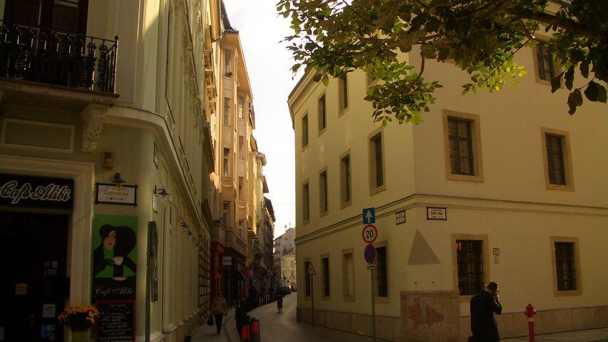 Прогулка вдоль средневековых стен города Пешта - экскурсии