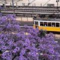 Прекрасный Лиссабон - экскурсии