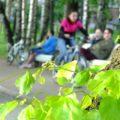 Нетривиальный велосипедный променад - экскурсии