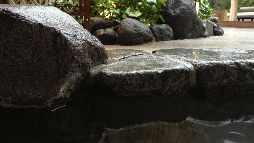 Целебные воды Хаконе - экскурсии