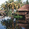 Фантастическая природа исельский колорит Кубы - экскурсии