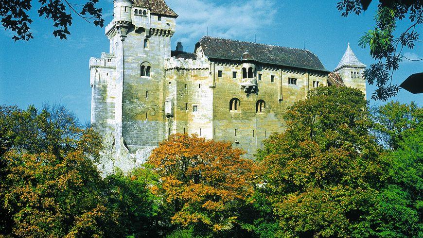 Сказки венского леса - экскурсии