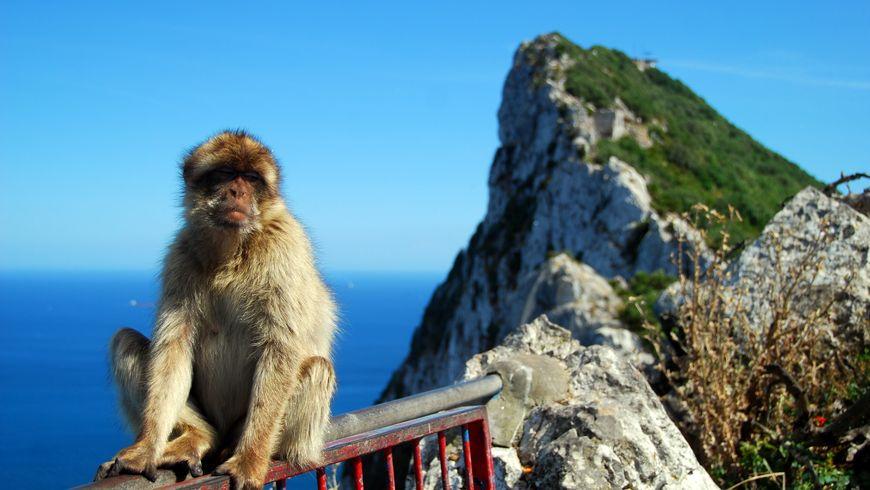 Гибралтар: путешествие к легендарной скале - экскурсии