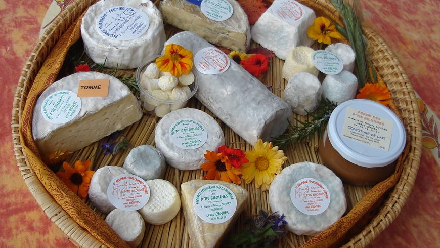 Поездка на ферму по производству сыров - экскурсии