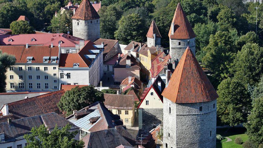 Жизнь средневекового Таллина - экскурсии