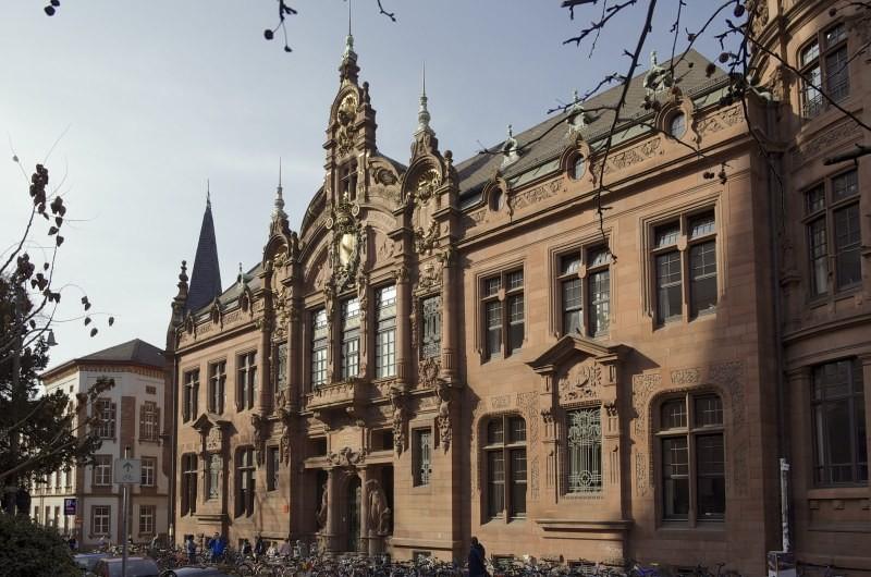 Гейдельберг университет