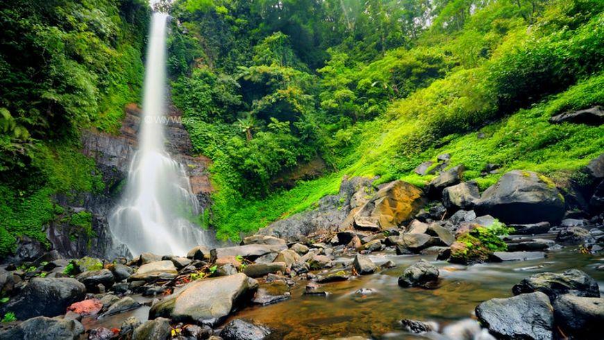 Водопады Бали и рисовые террасы - экскурсии